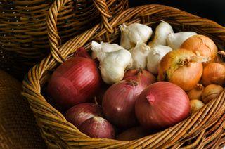 Garlic_onions